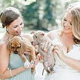 Bride Uses Puppies in Wedding Photos