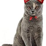 Christmas Pet Headband