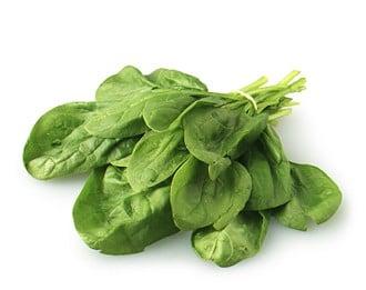 Sautéed Chicken with Spinach
