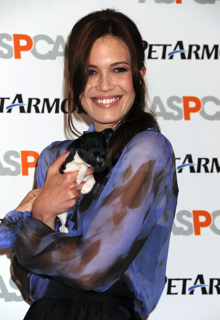 Mandy Moore cuddled a cute puppy today in NYC as she helped promote her new charitable cause. The animal-loving actress is teaming up with the ASPCA and PetArmor to help bring affordable pet medicines to dog and cat owners around the country. It's just one of several projects Mandy is currently working on. The trailer for Love, Wedding, Marriage, her upcoming romantic comedy, was just released, and she's also hard at work writing songs for her new, retro-inspired album. We had a chance to chat with Mandy this morning as she helped spread the word on keeping pets healthy, so stay tuned on PopSugar this week to watch our full interview with her! Not only did she tell us a little bit about the menagerie of dogs and cats she shares with her husband, Ryan Adams, but she also talked about what she's learned about married life and what it was like to play Twilight star Kellan Lutz's onscreen wife.