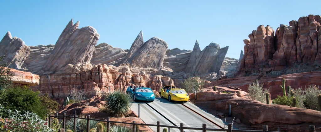 Which Disneyland Ride Is the BEST? Vote Note!