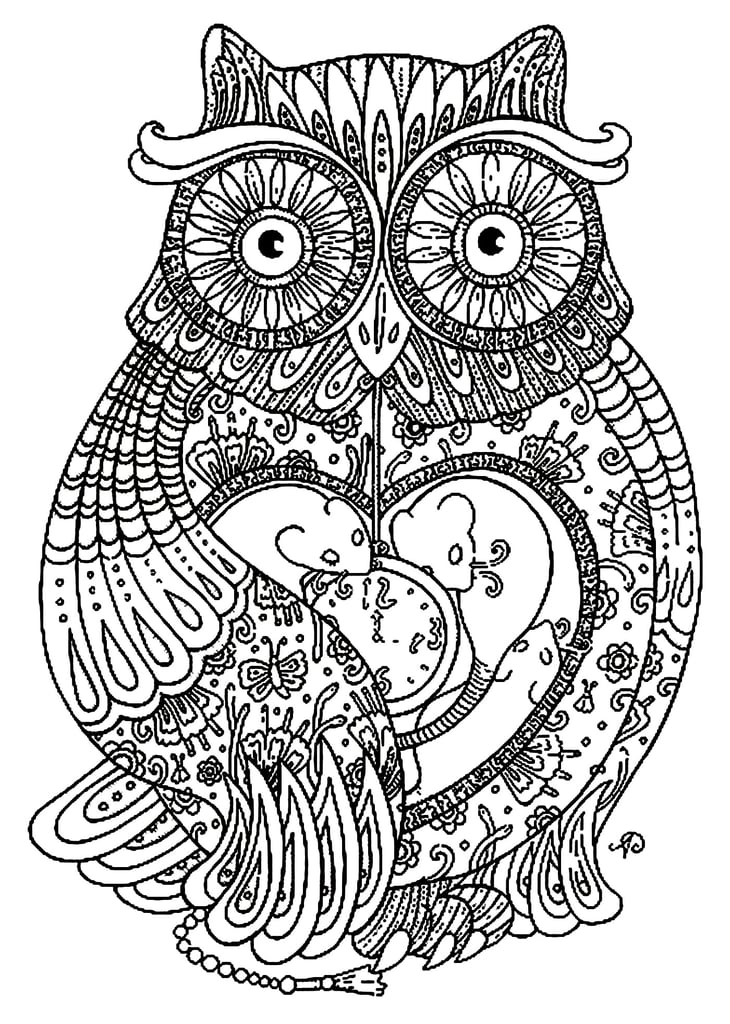 get the coloring page camera free coloring pages for adults popsugar smart living photo 47