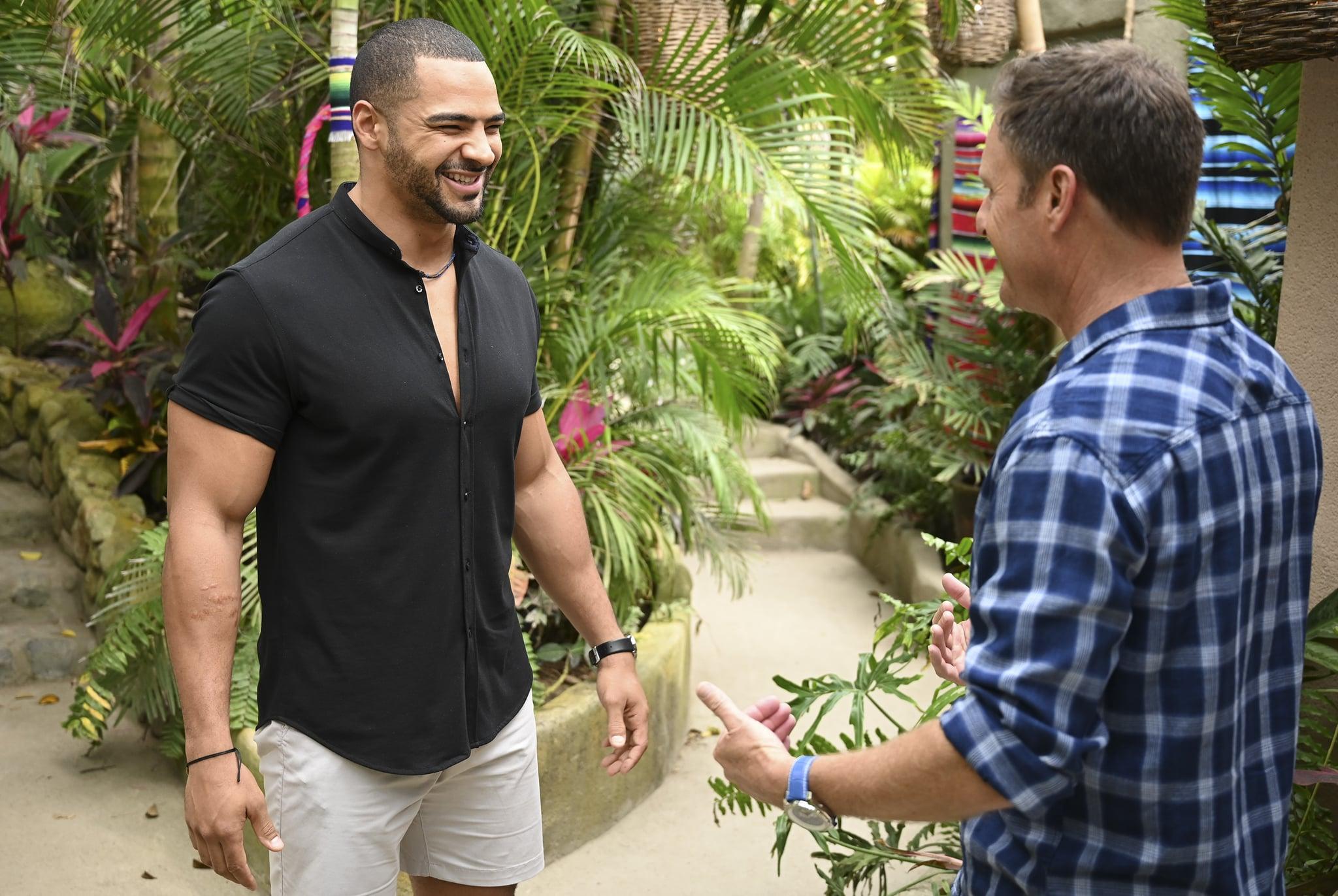 BACHELOR IN PARADISE -