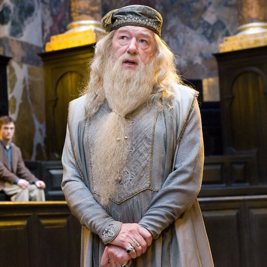 How Does Albus Dumbledore Know Newt Scamander?
