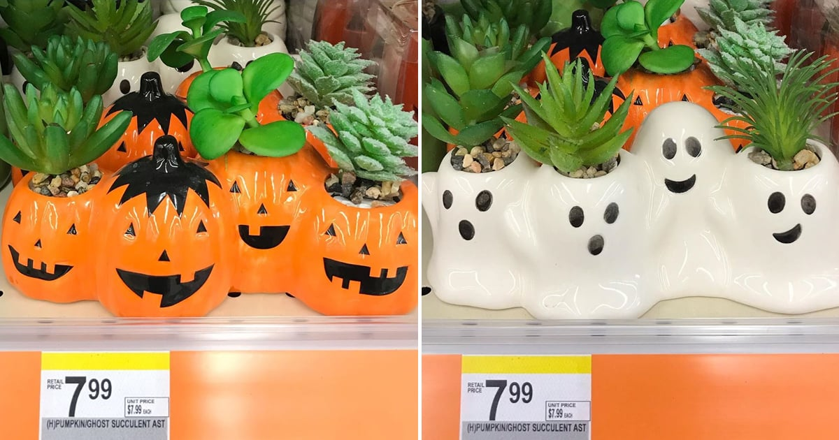 Beware: These Adorable Halloween Succulent Planters Might Magically Empty Your Wallet