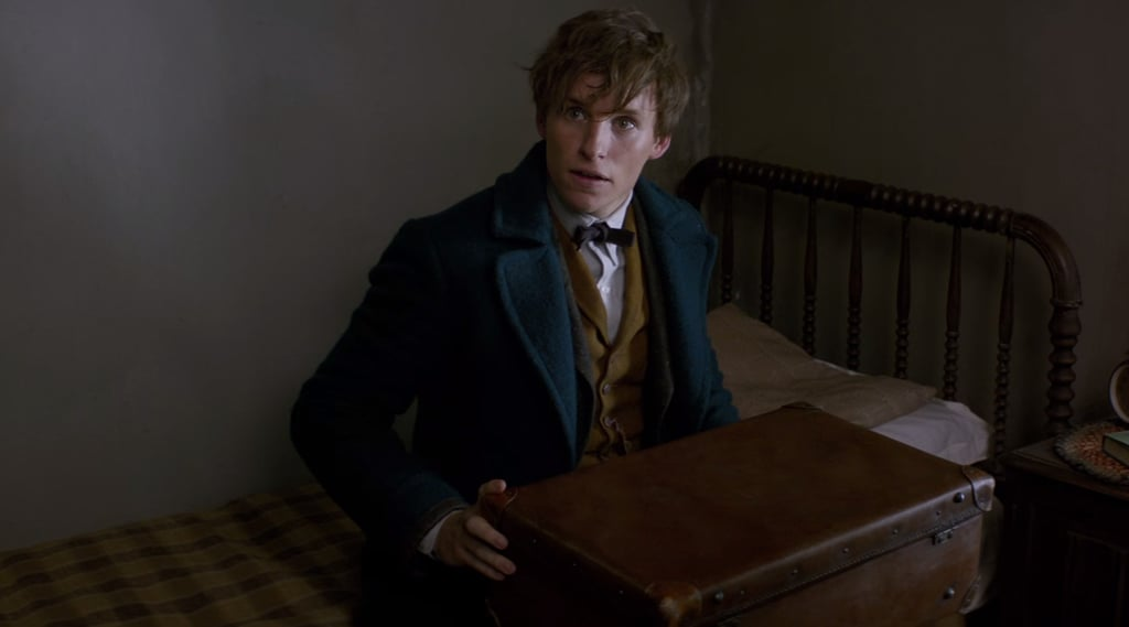 Meet the Whole Cast of Fantastic Beasts and Where to Find Them
