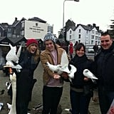 Taylor Swift and Harry Styles played with some doves. Source: Twitter user Magda