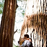 Redwood-Filled Ceremony