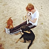 Kathy Griffin played with her dogs on the beach. Source: Instagram user kathygriffin