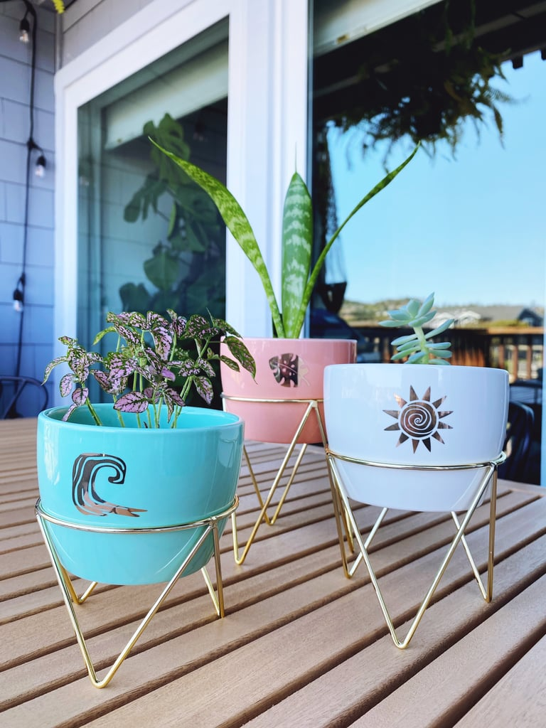 Cute Indoor Planters at Target   Editor Review 2021