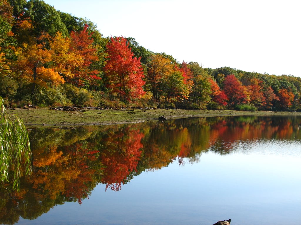 Best Cities To See Fall Leaves Popsugar Smart Living