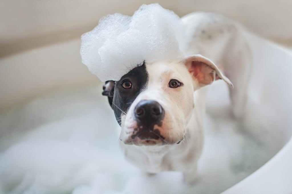 Scrub Your Tub After Bath Time