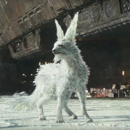 What Is a Vulptex in Star Wars?