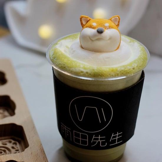 Shiba Inu Lattes at Taiwan's Mr. R Drinks Cafe