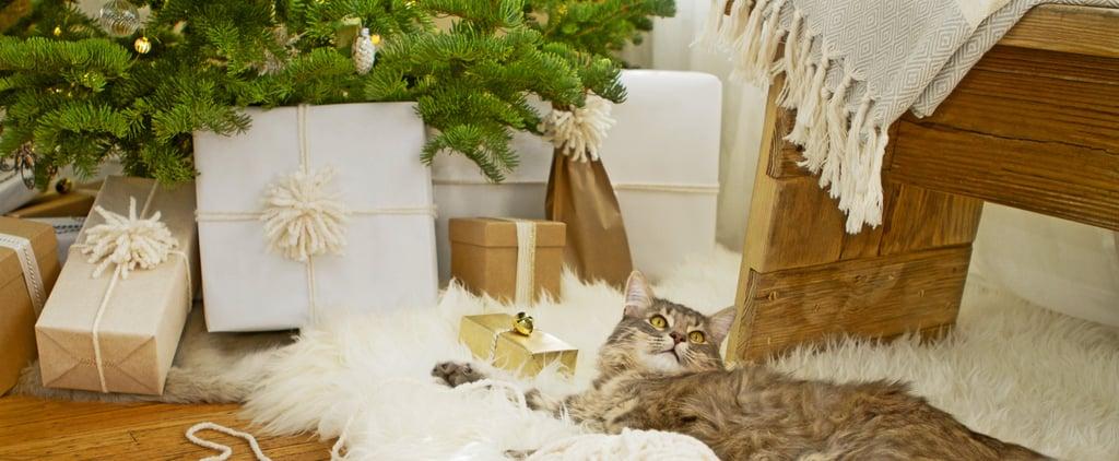 Useful Holiday Gift Ideas
