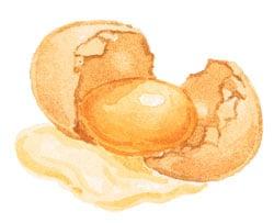Eating Eggs Can Benefit Eye Health