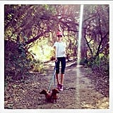 Rosie Huntington-Whiteley knows the best way to sneak in extra calorie burn — a leisurely hike with the dogs!