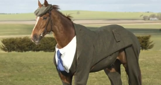 Finally, A Business Suit Suitable For A Horse