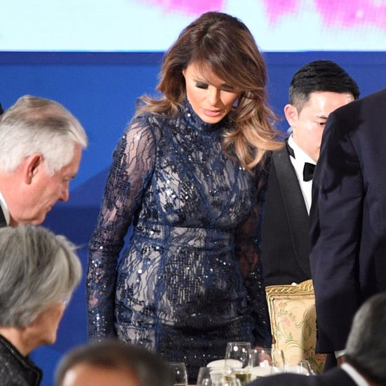 Melania Trump's Sheer Dress in South Korea