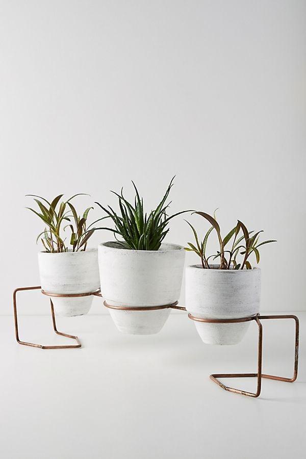 Kala Pot Set + Stand