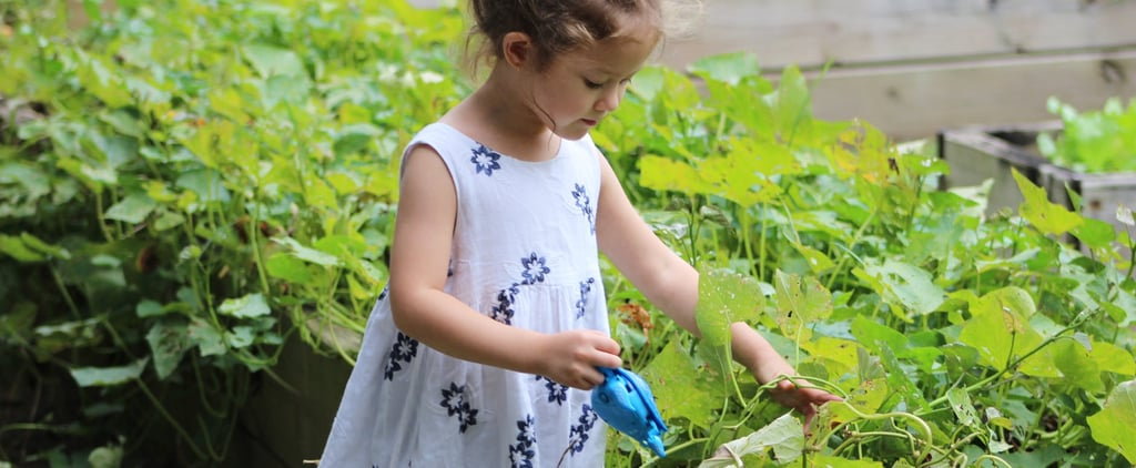 How to Grow a Garden With Kids
