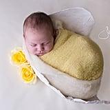 Newborn Photos in Baby Bump Cast Molds
