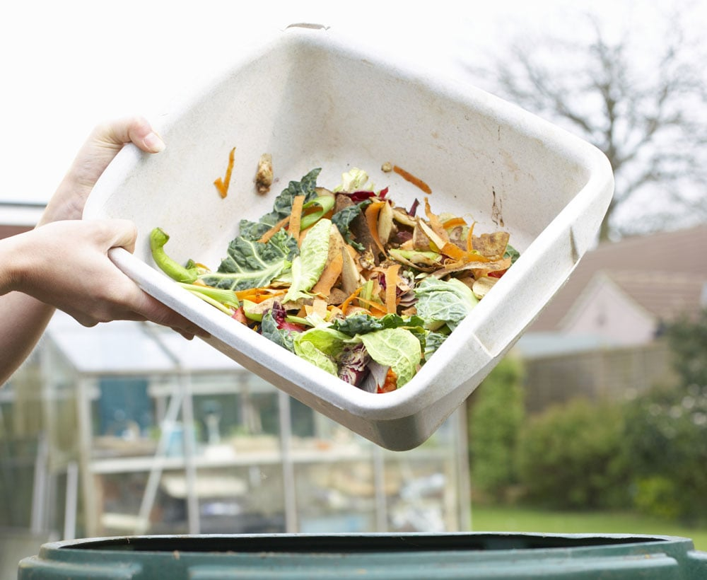 Compost the Food Waste