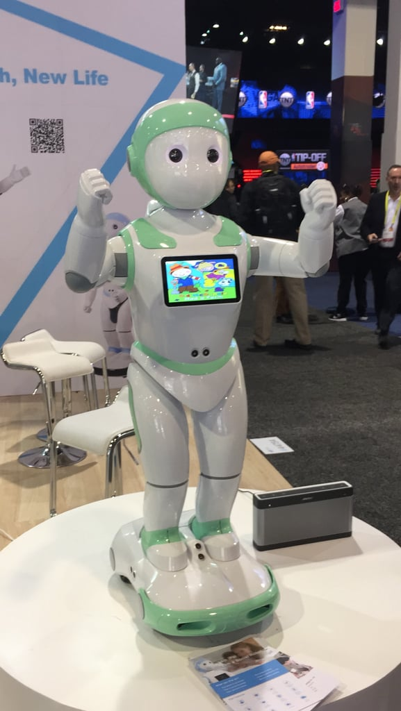 iPal Robot
