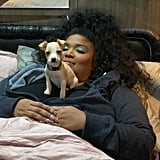 Lizzo's Crew Member Adopts a Rescue Puppy While on Tour