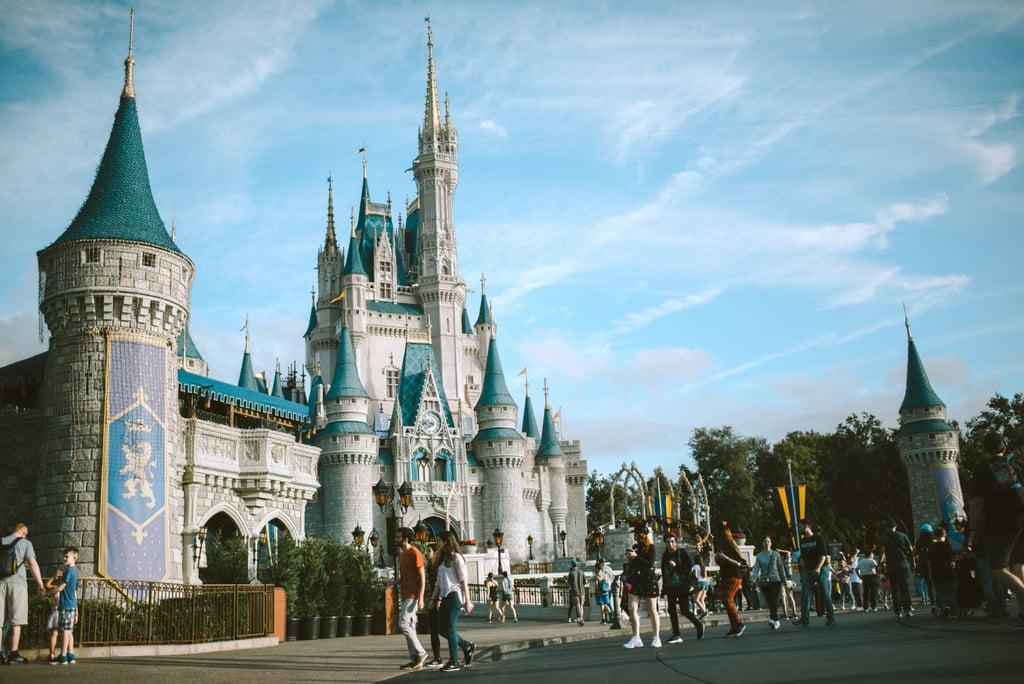 Walt Disney World Zoom Background