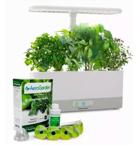 Herbs Seed Pod Kit