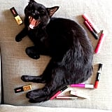 Kitties and lip stains . . . what else do you really need? Source: Instagram user intothegloss
