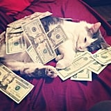 """I just love snuggling with money.""  Source: Instagram user methamphetamina"