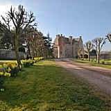 Merida's Castle (Brave)
