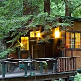 Redwood Treehouse  Cabin
