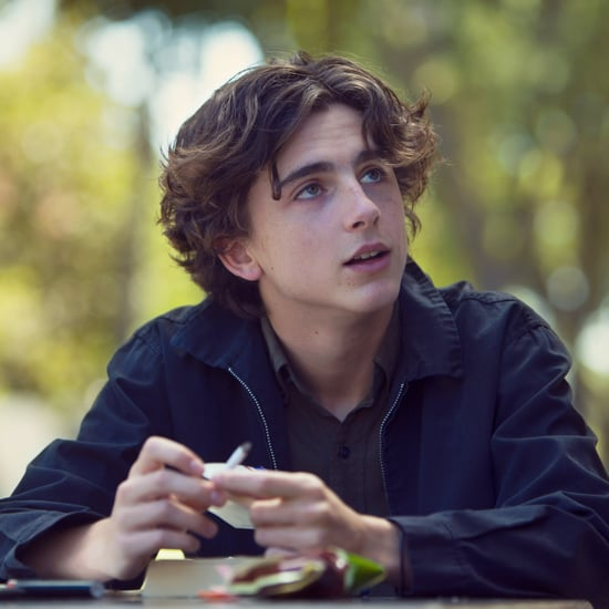 What Has Timothee Chalamet Been In?