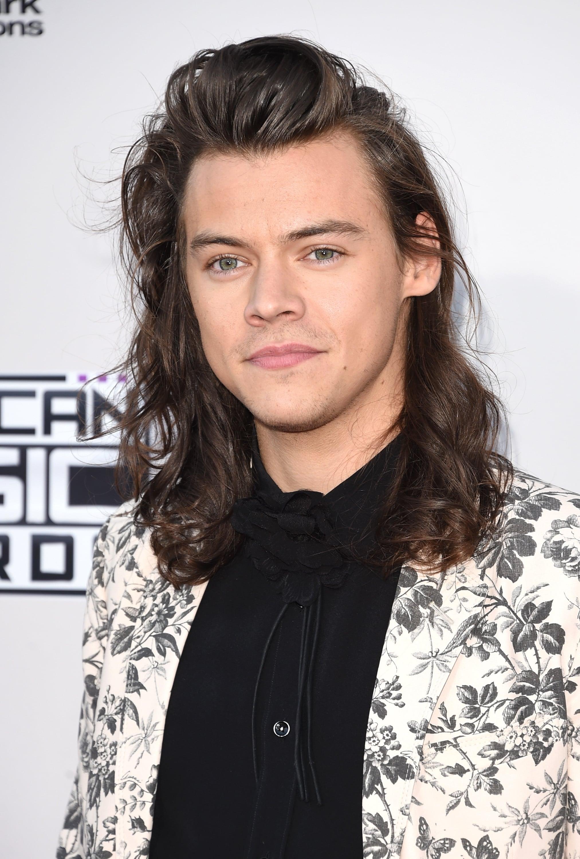 Harry Styles Hair At American Music Awards 2015 POPSUGAR Beauty