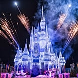 """Magic Kingdom Park: Cinderella Castle During the """"Frozen Holiday Wish Show"""""""