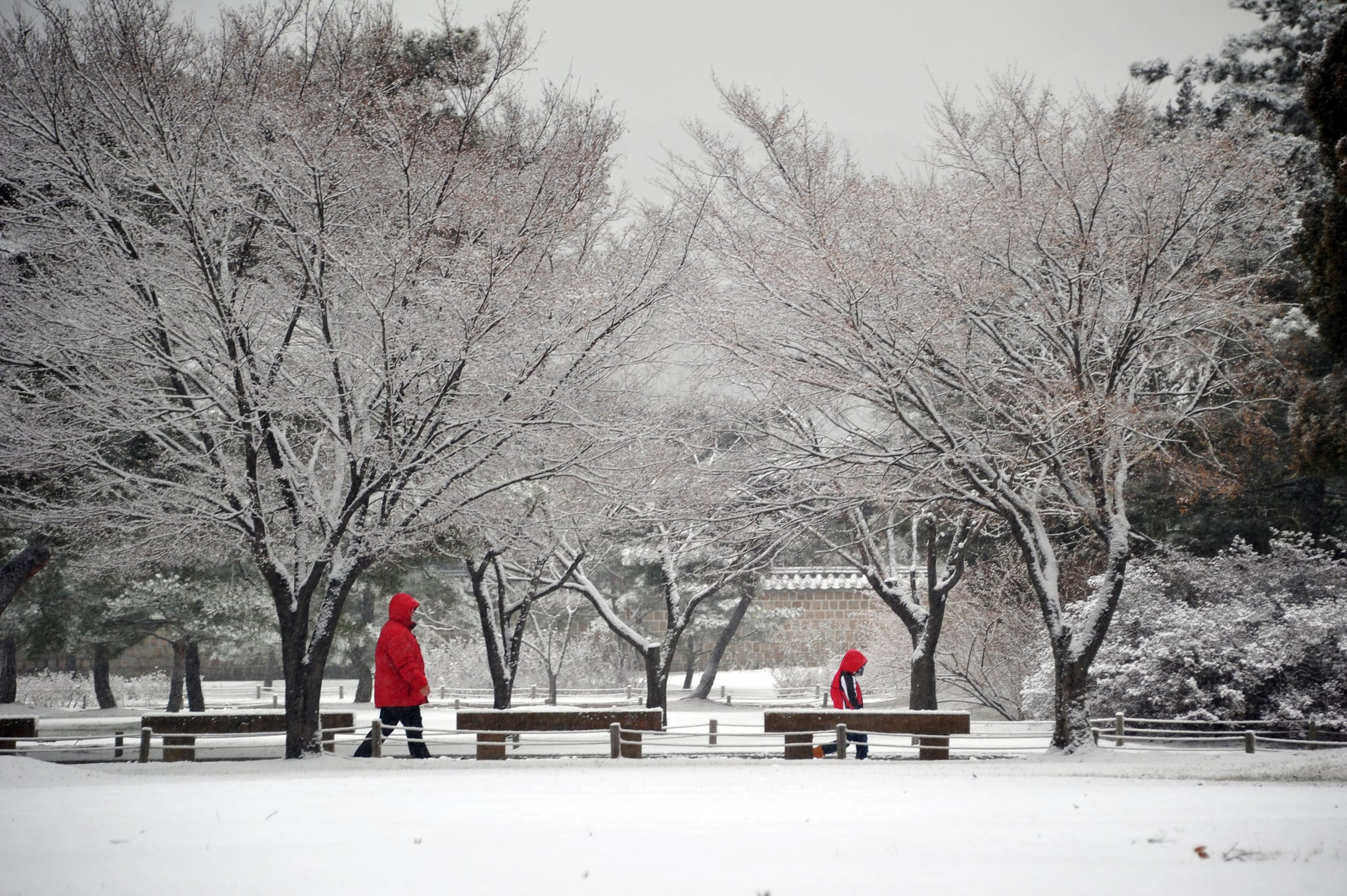 People in Seoul, South Korea, braved chilly weather following a heavy snowfall.