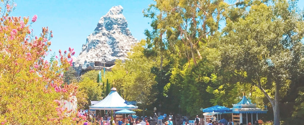 Use This Tip For Avoiding a Supercrowded Day at Disneyland