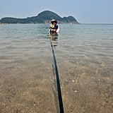 A Corgi and his pet pop stay just a leash-length away from shore.