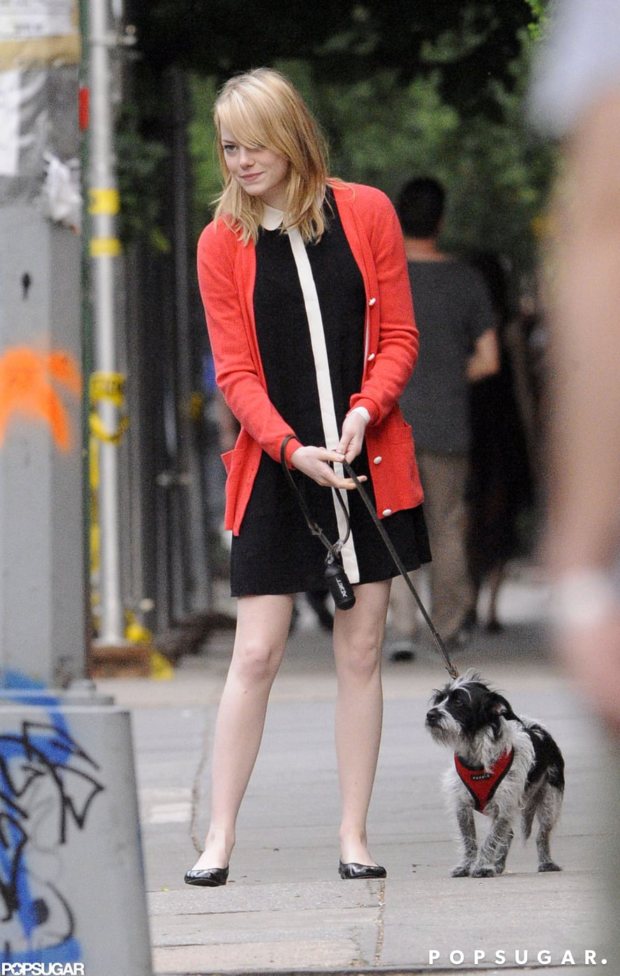 Emma Stone's dog accompanied her to say farewell to her mom after a visit in NYC.