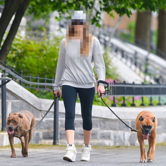Actress Walking Pit Bull in NYC