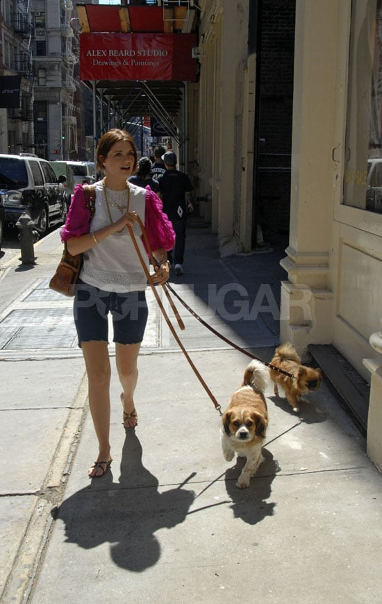 Ziggy & Charlie Take Mischa For A Walk