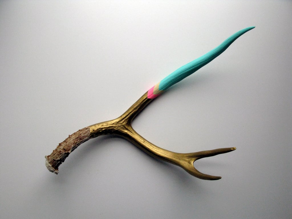How gorgeous is this Painted Mule Deer Antler ($103)? It will be a welcome addition to your bohemian pal's pad.