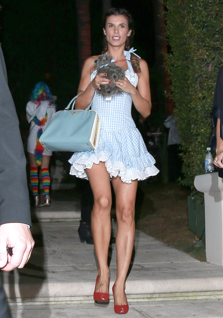 Dorothy gale pop culture costume ideas from celebrities for Dorothy gale