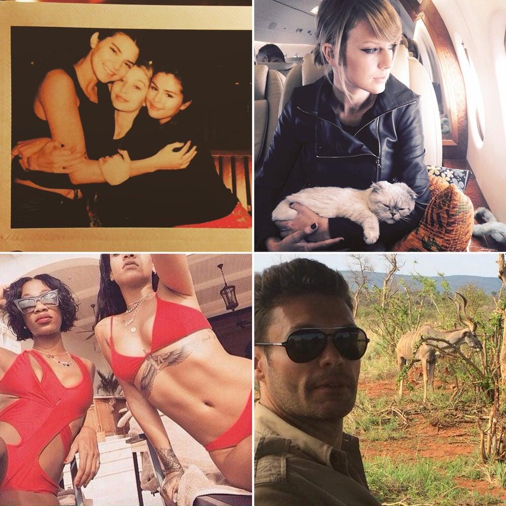 Popsugar Celebrity: Celebrities On Christmas 2014