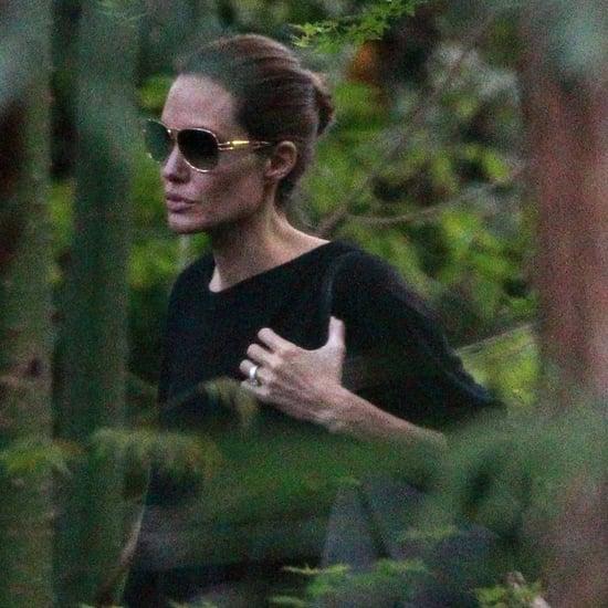 Brad Pitt and Angelina Jolie's Weekend Getaway | Pictures