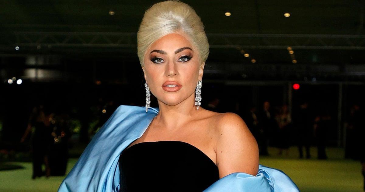 I'm Surprised the Billowing Sleeves on Lady Gaga's Velvet Gown Didn't Send Her Flying Away.jpg