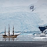Sail to Antarctica in a Tall Ship